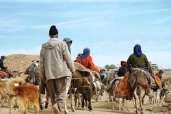 ۴۰۰ پنل خورشیدی رایگان در اختیار عشایر استان سمنان قرار داده شد