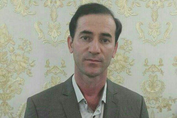 «سلسله» پایلوت اجرای طرح اصلاح نژاد دام سنگین شد