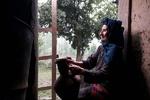 'Meeting' wins Armenia's Apricot Tree grand prix