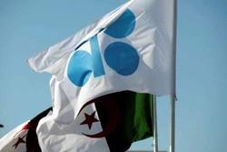 کشورهای تولید کننده نفت به ترامپ باج ندادند/ افول نقش شیخ نشینان