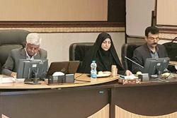 دشت قزوین پایلوت اجرای طرح توسعه کشت سورگوم می شود
