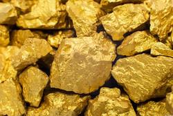 کشف بیش از ۵۰۰کیلو گرم سنگ طلا در ورزقان