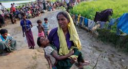 Rohigya