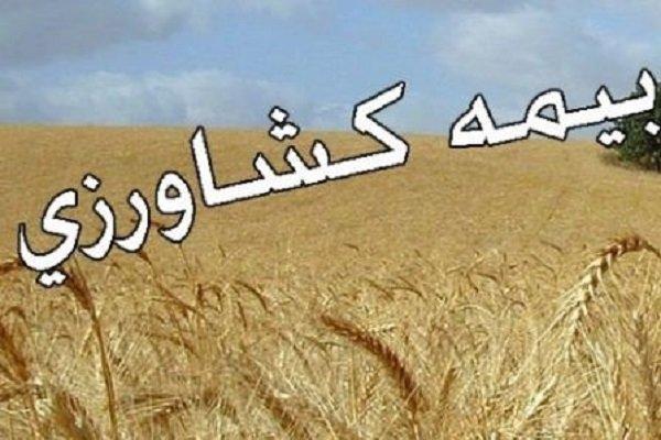 پرداخت ۱۰۰ درصدی غرامت کشاورزان و دامداران خراسان جنوبی