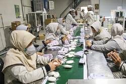 ۱۷۵۰ معلول بهزیستی استان قزوین در بخش خصوصی مشغول کار شدند