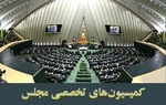 وضعیت فلسطین در کمیسیون امنیت ملی و سیاست خارجی بررسی میشود