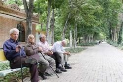 کانون دوستدار سالمند در مرند راه اندازی می شود