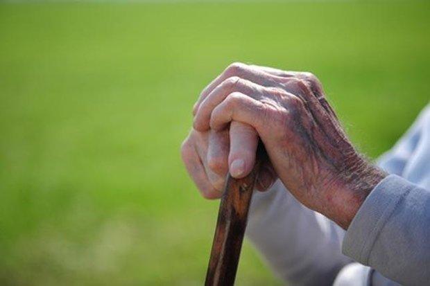 بالغ بر ۱۴ هزار سالمند تحت پوشش کمیته امداد استان زنجان هستند