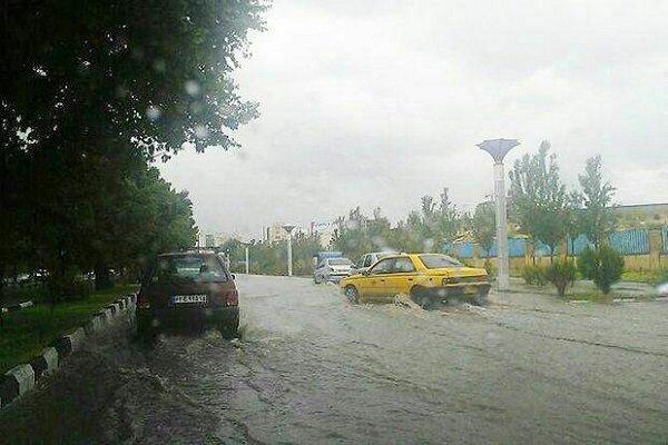 رگبار باران و تگرگ در استان بوشهر/ احتمال سیلاب و آبگرفتگی معابر
