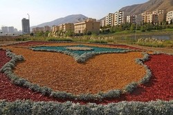 Wood chips supersedes green grass in Tehran