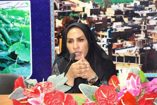 نمایشگاه توانمندسازی روستاییان استان تهران مردادماه برپا می شود
