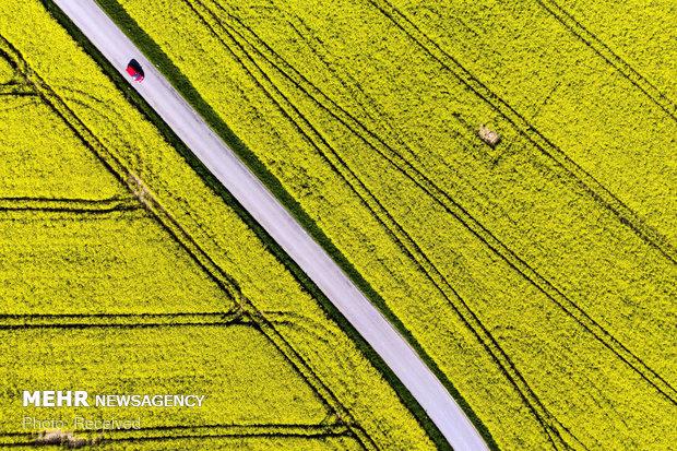 تصاویر گرفته شده با پهپاد