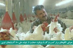 پشتکار شاه کلید موفقیت/از مرغ فروشی دوره گرد تا زنجیره تولید کشور