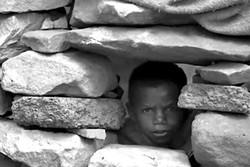 «داستان یمن» در «سینماحقیقت» روایت می شود