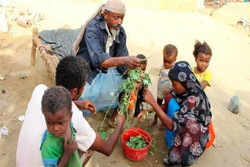 کشوری که «بن سلمان» مردمش را به «برگ خواری» انداخت