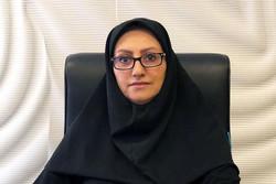 فعالیتهای بینالمللی سازمان سینمایی حوزه هنری تشریح شد