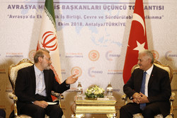US is upset over Iran-Turkey's friendly ties: Larijani