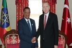 رؤسای جمهوری ترکیه و اتیوپی در استانبول دیدار کردند