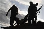 هجوم سلاحهای تازه به طبیعت/کمکاری در اخذ جریمههای شکار
