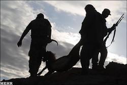 تغییر سیاست با تعویض ریاست/سرنوشت حیات وحش در دست شکاردوستان است