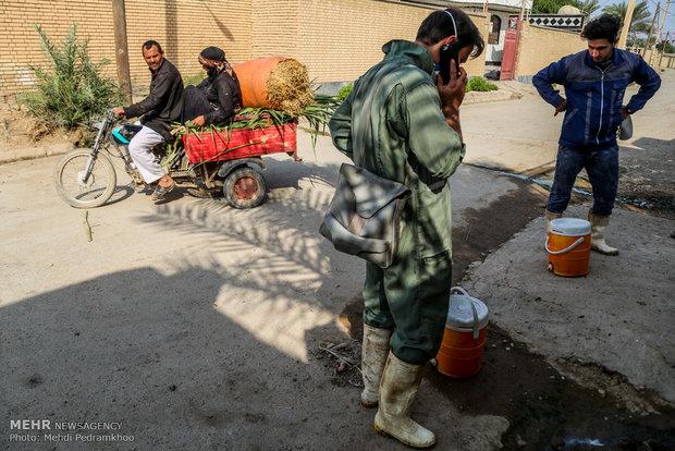 واکسیناسیون تب برفکی در روستای الباجی