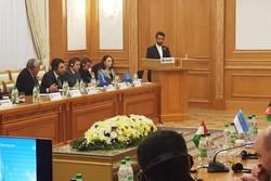 ICT links ensure peaceful ties in region: Iran ICT min.