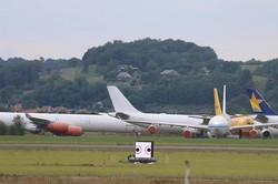 فریب پرندگان برای دورکردن آنها از فرودگاه ها