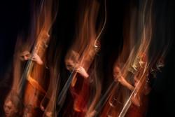 «سبکبال» در «خانه» نواخته شد/ اجرایی متفاوت از ارکستر ملی ایران