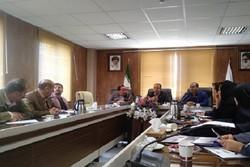 """جشنواره """"هه نار"""" ظرفیتی برای توسعه گردشگری منطقه اورامان است"""