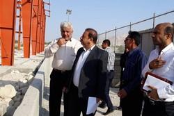 نگاه ویژهای به سرعت و کیفیت اجرای پروژههای روستایی بوشهر داریم
