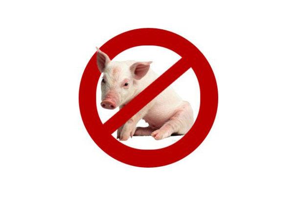 آیا گوشت خوک و الکل حقیقتا برای بدن مضر هستند؟