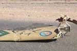 سقوط هواپیمای سعودی در تبوک و کشته شدن سرنشینان آن