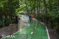 The Netherlands Bicycle Partnership to promote cycling in Iranian cities