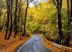 توقف خودرو درشهرک سروش جنگل ممنوع شد/مردم به النگدره مراجعه نکنند