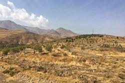 مدیریت ضعیفی در حوزه خاک داریم/ وضعیت بحرانی روند آلودگی خاک