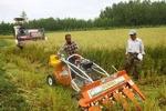 شیوههای نوین کشاورزی حفاظتی در بوشهر اجرا میشود