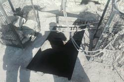 یک واحد زغال گیری غیرمجاز و آلاینده در بهارستان شناسایی شد