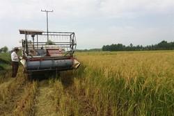 مانعتراشی برای صنعتگران کشاورزی/تولیدات داخلی کیفیت بالاتری دارد