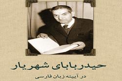 ترجمه فارسی «حیدربابا» به چاپ دهم رسید