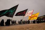 Irak'ta geleneksel Erbain yürüyüşü