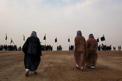 زائرین کربلا پیدل مارچ کرتے ہوئے کربلا سے 150 کلو میٹر پہنچ گئے