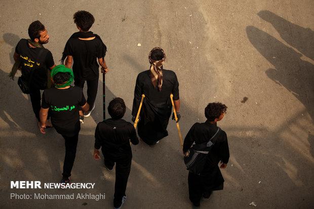 زائران پیاده اربعین در 170 کیلومتری کربلا