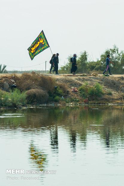 پیاده روی زائران حسینی از جنوب عراق به سمت نجف