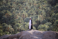 """نشاطات """"رجل دين ايراني"""" في مجال الثقافة والزراعةبقرية """"بيكوه"""" / صور"""