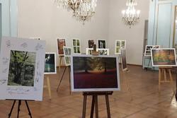 نمایشگاه عکس «هیرکانی سبز ازلی» افتتاح شد/ امید به ثبت جهانی