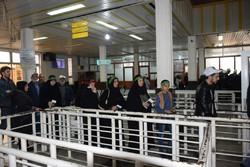 حضور زوار خارجی در راهپیمایی اربعین ۲۵ درصد افزایش یافته است