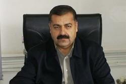 مجوز پرورش ۵۰۰ هزار قطعه زالو در کردستان صادر شد