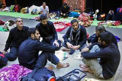 اسکان زائران اربعین در موکب حضرت ابوالفضل(ع) در نجف اشرف
