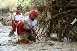 Nine provinces inundated by flood