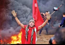 Israeli soldiers kill more Palestinians in Gaza